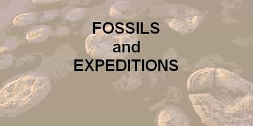 Fossils / Time and Space Science